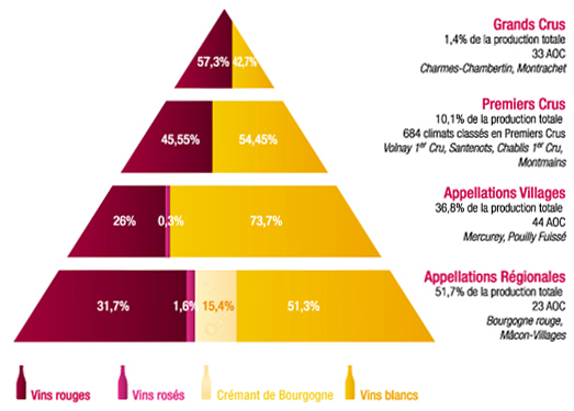 pyramide classification AOC Bourgogne